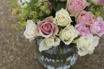 bloom-1867911_1920